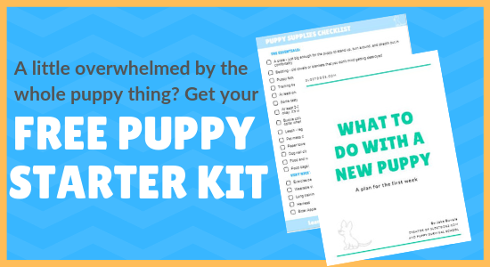 Puppy Supplies Checklist: Everything Your New Puppy Needs (and What They Don't Need)